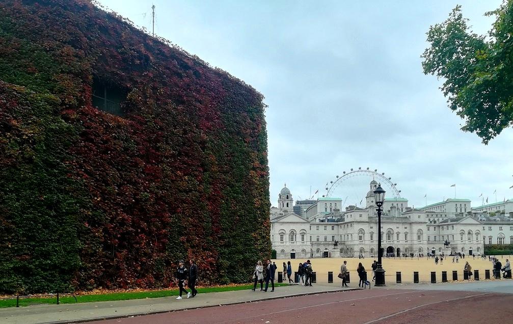 Za co kocham Londyn? 10 powodów do tego, aby zwiedzić Londyn. parki